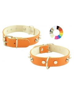 Collar Mountain Co1F RS 30-36 L400 A25