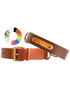 Collar Leather Class RJ 59-68 L750 A40