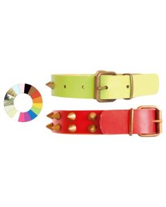 Collar Leather Class Co1F VL 39-48 L550 A30